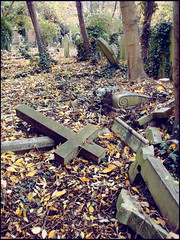 Decadenza - Highgate cemetery (.:Stardust:.) Tags: uk london londra cimitero highgatecemetery decadenza