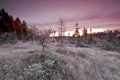 _IGP0935* (Northwoods Photos) Tags: autumn ligh