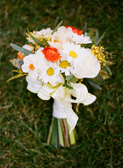 San Jose Bridal Flowers, White Bouquet of Daisies (Signature Bloom) Tags: pictures flowers wedding decorations white flower floral rose yellow garden for bride design spring herbs outdoor designer country sanjose ranunculus images foliage daisy designs florist vendor siliconvalley bouquet marguerite weddings bridal decor peninsula southbay ideas daffodils bouquets weddingphotos mimosas sanjoseca losgatosca florists whitewedding bridalflowers gardenroses 95121 95139 sanjoseflorist sanjoseweddingflowers signaturebloom patiencegardenroses losgatoscaflowers wwwsignaturebloomcom sanjoseweddingflorist losgatoscaweddingflorist losgatoscaweddingflowers bridalflorist weddingfloristsanjose