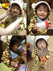 パジャマとして虎を着るとらちゃん(2011/11/9)