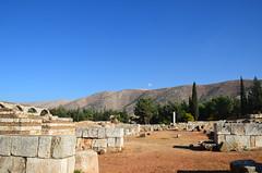 Anjar, Umayyad city, al-Walid I, 705-15, along the decumanus maximus (15) (Prof. Mortel) Tags: lebanon umayyad anjar