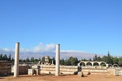 Anjar, Umayyad city, al-Walid I, 705-15, ruins of mosque with reused columns (2) (Prof. Mortel) Tags: lebanon umayyad anjar