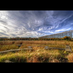 The way is not in the sky. The way is in the heart. (genevieve van doren) Tags: wood autumn trees sky nature water colors grass clouds automne eau couleurs bridges ciel arbres nuages riet hdr roseaux ponts bois planches domein puyenbroeck ruisseaux passerelles