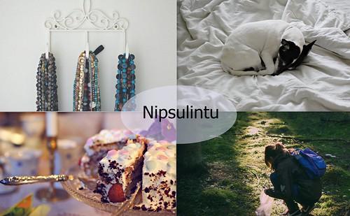 nipsulintu