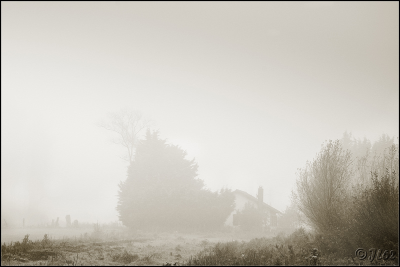 Brumes et brouillards 6349490977_0d07ea8bef_o