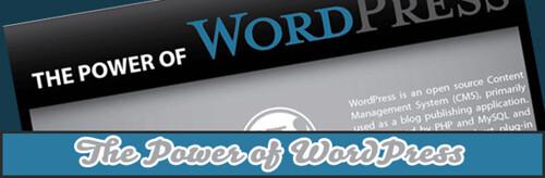 Infographic : The Power of WordPress