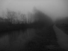 (Jean-Luc Lopoldi) Tags: mystery river soir brouillard scarpe nightfall silhouettesoftrees tombedelanuit
