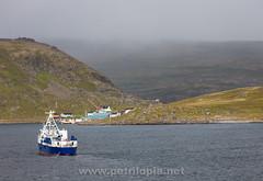 Hurtigruten Cruise (Petri Lopia) Tags: norja norway norge hurtigruten nordnorge north sea cruise travel trave retki matka meri water norwegian norwegiansea