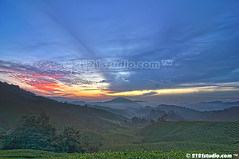 Sunrise (HDR) (2121studio) Tags: cameronhighlands sgpalasteaplantation