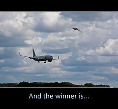 Spotten is serious business (Arie van Tilborg) Tags: holland amsterdam airport airplanes landing planes takeoff schiphol ams airtraffic landen luchthaven spotters vliegtuigen opstijgen arievantilborg