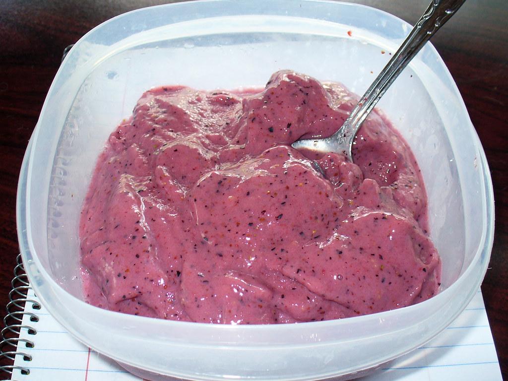 2011-07-02 - Berry Ice Cream - 0005