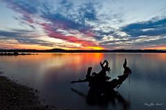 _MG_7144 (May Elin Aunli) Tags: sunset norge solnedgang grimstad fevik hasla haseltangen haslatangen norwayfevikhaseltangenhaslahaslatangengrimstadsunsetsolnedgangnorway