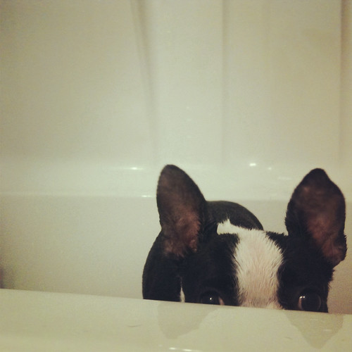 Get me outta this tub.