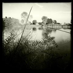 Veterans Park ... Milwaukee ... Lake Michigan (PeggyDavid) Tags: wisconsin blackwhite milwaukee veteranspark johns lakepark iphone claunch milwaukeecounty glap hipstamatic claunch72monochrome