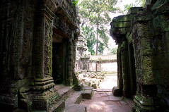Door to door (chillveers15) Tags: trees ancient ruins cambodia pentax sigma jungle 1020mm angkor wat ta carvings prohm etchings kx aspara