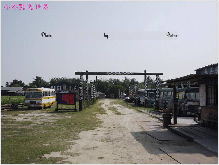 新港頂菜園 (2).JPG