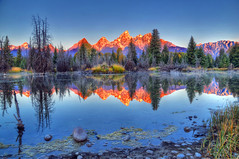 Schwabacher Landing at the Beaver Pond (Ronnie Wiggin) Tags: morning trees sky usa mountain mountains reflection tree nature field sunrise reflections landscape outdoors nikon day grand jackson snakeriver ronnie wyoming grandtetons mirrorimage teton tetons moutains grandteton jacksonhole scenics secluded tetonrange mountainrange grandtetonnationalpark aspentree d300 teatons beaversbend beaverpond buckmountain gtnp schwabacherlanding jacksonwy wiggin snowcoveredmountains schwabacher middleteton mtowen thethreebreasts teewinotmountain staticpeak teetons lestroisttons dcpt mtwister dirtcheapphototours nezpercepeak schwabachars rwigginphotos lakejacksonwyoming beautifuljacksonholephotos photosofjacksonhole ronniewiggin stjohnmountainmtmoran