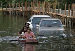 thaiflood_291020112