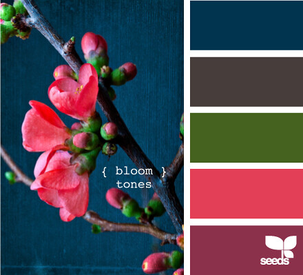 Bloom Tones from Design Seeds