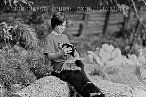 7. twoguineapigs-_MG_3981-taylor+fosters by twoguineapigs pet photography