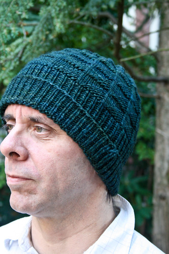 Horatio by Knitting Kninja in Malabrigo Vaa