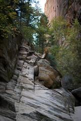 Hidden Creek Trail
