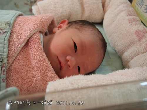 出生第一天2