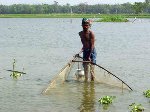 Fishing, Bangladesh. Photo by WorldFish, 2005