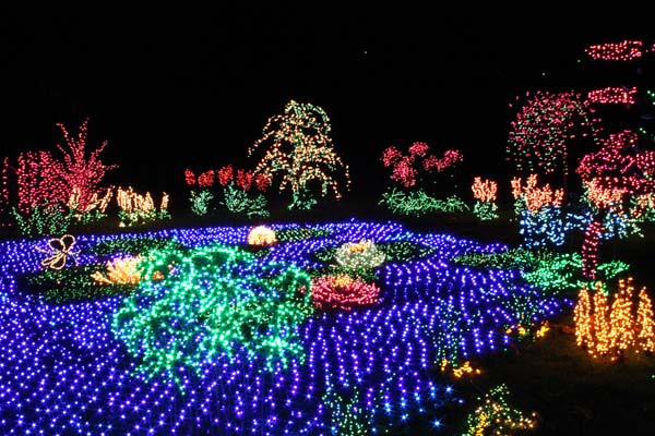 ... Garden d'Lights | Bellevue.com ... - Garden D'Lights Festival - Bellevue Events, Happenings, Attractions