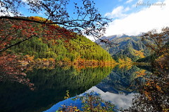 Twin World (nawapa) Tags: china travel autumn reflection heritage landscape mirror view unesco aba sichuan jiuzhaigou 2011 nawapa