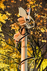 Mast on FOX12 van (Igal Koshevoy) Tags: leaves protest fallfoliage newsvan fox12 occupyportland occupypdx occupyoregon