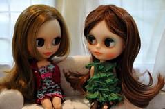 SARINHA e HELENA - Fofocando