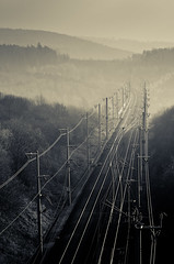 (koeb) Tags: train nebel forrest tracks rails bahn wald bahnschienen krle