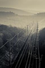 (koeb) Tags: train nebel forrest tracks rails bahn wald bahnschienen körle