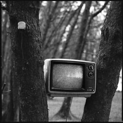 No Signal (Nasey) Tags: blackandwhite bw 120 6x6 film television mediumformat weird blackwhite tv surreal squareformat malaysia bnw terengganu carlzeiss nosignal 80mmf28 hasselblad503cw oldtelevision setiu surrealsm nasey nasirali kampungmangkuk planarcft