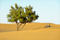 Erg Chebbi dunes 3. (jero 053 (J.Fransen)) Tags: africa light sunset canon landscape photography evening daylight exposure desert dunes wide morocco maroc canon5d process tones marokko lightroom merzouga desolated lightfall morningdawn