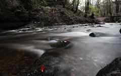 Autumn in Scotland / Otonzu in Iscotzia (diego_russo) Tags: longexposure scotland fiume escocia alyth scozia longshots lungheesposizioni diegorusso wwwdiegorussonet