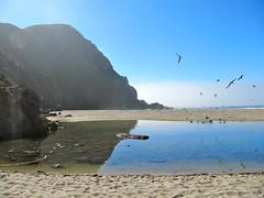 Pfeiffer Beach (kewpiebb99) Tags: bigsur pfeifferbeach pfeifferbigsurstatepark