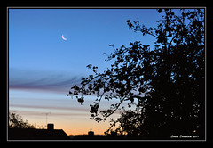 Dawn (Simon Downham) Tags: moon garden dawn backyard nikon zoom crescent nikkor 70300 d90 backyardshot nikond90