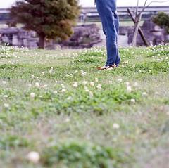 one fine day (Gregory Wu) Tags: zeiss hasselblad carl fujifilm cf sonnar 150mm 503cx
