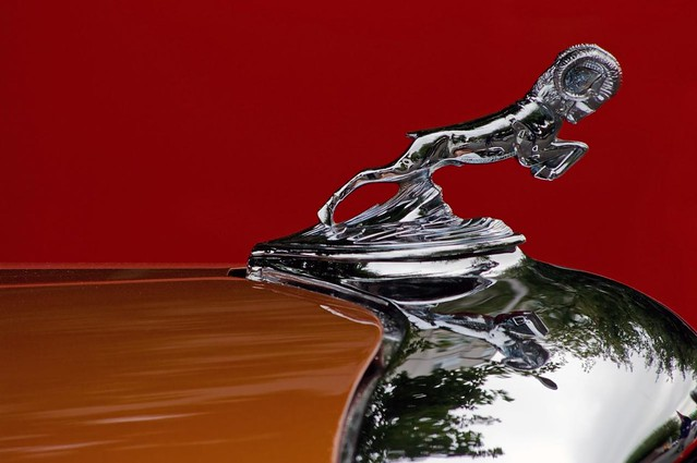 red orange classic vintage hoodornament greenwoodcarshow slowride dodgerampickup deniedbyppg