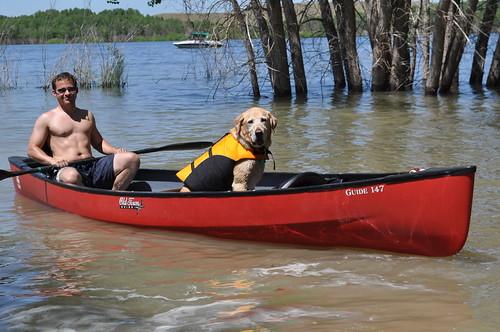 boat dog