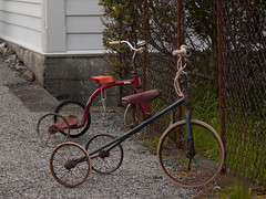 Tricycles (tord75) Tags: norway norge rust antique tricycle noreg trehjulsykkel øygarden oygarden sæle nordresæle
