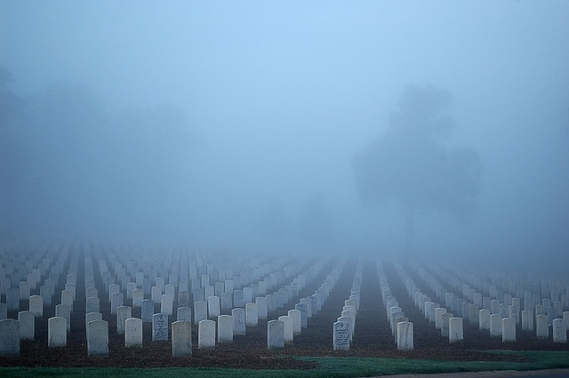 Jefferson Barracks National Cemetery, in Lemay, Missouri, USA - in fog at sunrise - 2