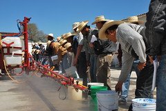 Farmers learn sprayer calibration (CIMMYT) Tags: people man latinamerica mxico training mexico technology gente wheat farming group calibration course machinery mexican learning knowledge grupo leader farmer practicando practice diffusion agriculture producer mexicano hombre toluca curso practical spraying participant trigo trainee difusin tecnologa amricalatina practicing agricultura sprayer labranza conocimiento practising grupal aprendiendo agricultor researchstation lder capacitacin dissemination prctica aspersor capacitybuilding productor experimentstation participante cimmyt aspersin calibracin maquinara aspersora estacinexperimental estacindeinvestigacin desarrollodecapacidades asperjadora
