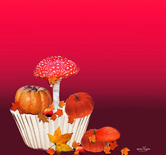 Hot Autumn (Grace Olsson Fotograf(Im abroad)) Tags: autumn nature mushroom leaves forest pump redbackground
