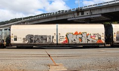 ZH 1766 Wellington (AA654) Tags: new car wagon graffiti rail zealand nz wellington freight zh 1766 1000000railcars kiwirail
