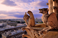 reminds me of the Hunchback of Notredame (dyorex) Tags: paris france europe cathdralenotredamedeparis thehunchbackofnotredame