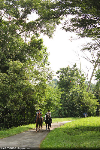 Bukit Brown Cemetery - Towards Jalan Mashor