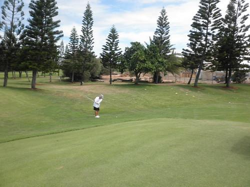 Turtle Bay Colf Course 234